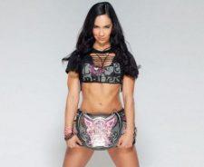 Aj Lee Divas Champion