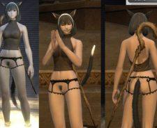 Final Fantasy Online Nude Mod