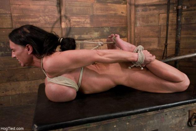 Hogtied Lisa Lipps Nude
