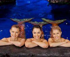 Mako Mermaids An H2o Adventure