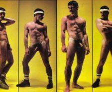 Porn Star Joe Porcelli Gay