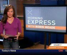 Robin meade slip