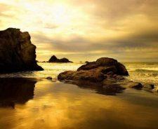 Sepia Beach