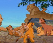 Simba Lion King Nala Porn