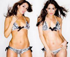 Wwe Divas Bella Twins Bikini